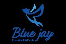 Blue-jay_01